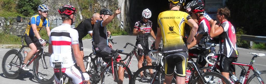 Ciclisti cipollaio